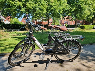 Experience Amsterdam by bicycle